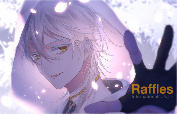 Raffles - Animation Design